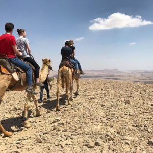 Tsur tours - Israel private tours
